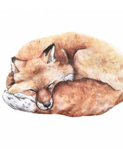 Mała poduszeczka - Fox