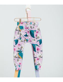 Spodnie dresowe Zimorodek-Laurka